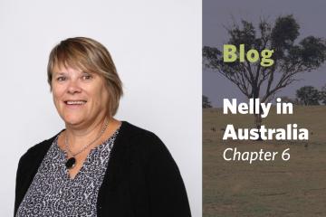 Nelly in Orange, Australia – Chapter 6